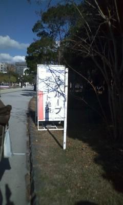 第63回福岡国際マラソン 完走
